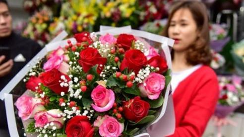 Hà Nội: Hoa hồng bất ngờ tăng giá mạnh trước lễ 08/03