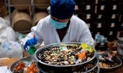 Trung Quốc phê chuẩn 3 vị thuốc đông y điều trị Covid-19