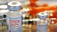 Xin cấp phép lưu hành vaccine COVID-19 của Moderna ở Nhật Bản