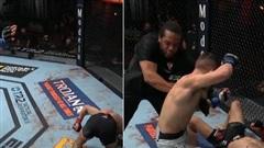 Trọng tài phán quyết không rõ ràng, võ sĩ UFC đang ăn mừng đành phải quay lại 'đánh tiếp'
