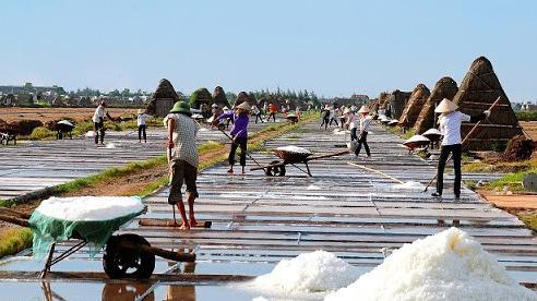Hà Tĩnh: Xuất cấp gần 630 tấn muối trắng hỗ trợ người dân  bị ảnh hưởng thiên tai