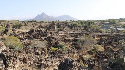 Ninh Thuận: Bãi đá cổ Karang bị xâm phạm, chính quyền không biết?