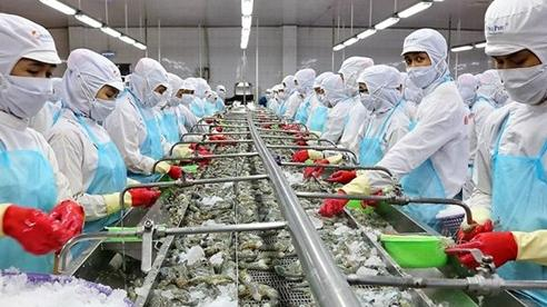 Việt Nam là thị trường cung cấp thủy sản lớn thứ 4 cho Nhật Bản