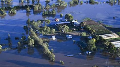 Úc: Chết kẹt trong xe hơi ngay ngày đầu nhận việc do lũ lụt kinh hoàng