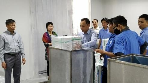 Miền Trung: Hàng hóa thực hiện chiếu xạ trước khi xuất khẩu có xu hướng gia tăng