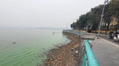 Xử lý ô nhiễm tại hồ Tây cần phải triệt để