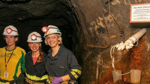 Sinh vật 'như ngoài hành tinh' sống khỏe trong mỏ vàng 1,5 km dưới lòng đất