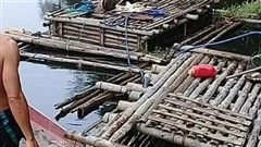 Thanh Hóa: Truy tìm nguyên nhân cá chết bất thường trên sông Mã