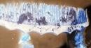 Tìm thấy 3 bộ hài cốt liệt sĩ ở Điểm cao 500 và bản Cheng xã Tân Liên, Hướng Hóa