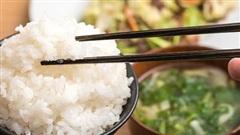 Lý giải nguyên nhân tăng cân khi ăn cơm trắng?