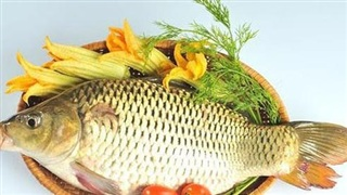 Cá chép - Dinh dưỡng, trị bệnh tốt