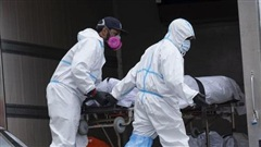 Thi thể 750 bệnh nhân Covid-19 vẫn nằm trong xe tải đông lạnh ở New York