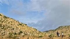 New Zealand hỗ trợ dự án 'giao hưởng rừng xanh' ở Ninh Thuận