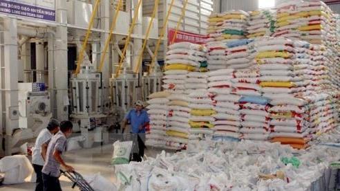 Giá trị xuất khẩu gạo 4 tháng đầu năm đạt trên 1 tỷ USD