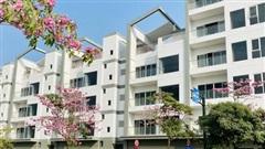 Kinh tế TP Hồ Chí Minh có tín hiệu tăng trưởng tích cực