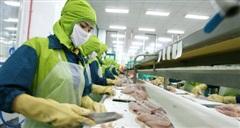 Doanh nghiệp thủy sản lại phản ứng với đề án thu phí hạ tầng cảng biển tại TP.HCM