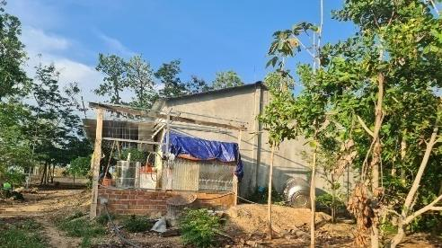 Bị giao 438ha đất, rừng trên giấy, không có thực địa, huyện nháo nhào xử lý