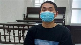 Lĩnh án vì trộm hàng loạt cây hoa giấy ở Hà Nội