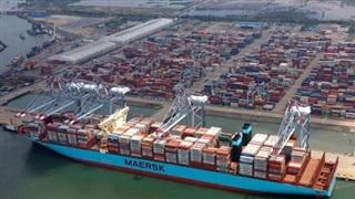 Giá cước vận chuyển tăng, nhiều doanh nghiệp ngành vận tải biển lãi lớn