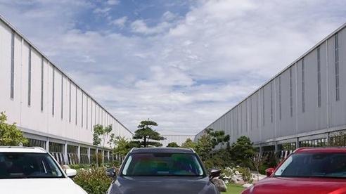 Thaco triệu hồi hơn 61.500 xe Mazda vì lỗi bơm nhiên liệu