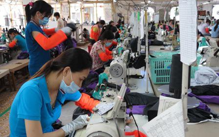Hơn 60.000 lao động có việc làm tại Đồng Tháp
