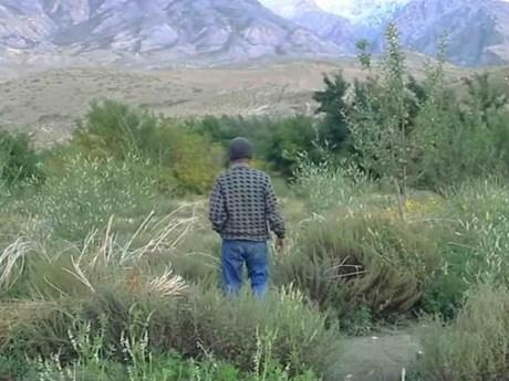Người đàn ông dành hai thập kỷ tạo ra ốc đảo xanh giữa sa mạc