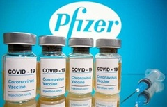 Bộ Y tế phê duyệt có điều kiện vắc xin phòng Covid-19 của hãng Pfizer