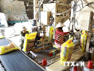Thị trường nông sản trầm lắng, giá gạo Việt Nam giảm nhẹ