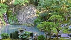 Tái sinh trong vườn Nhật Bản