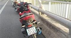 Để lại xe và dép trên cầu Rạch Miễu rồi lao xuống sông Tiền