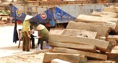 Hàng loạt sai phạm tại Cục thi hành án tỉnh Đắk Lắk