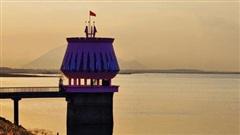 Vụ hồ Dầu Tiếng bị xâm hại: Công ty Tân Châu đã 'qua mặt' Bộ NN&PTNT như thế nào?