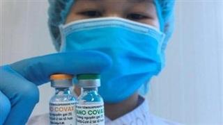 Doanh nghiệp đề xuất Chính phủ cấp phép khẩn cấp cho vaccine 'made in Việt Nam' NanoCovax