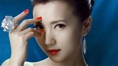 Nữ diễn viên Trần Hảo bị nghi ngờ về học hàm giáo sư