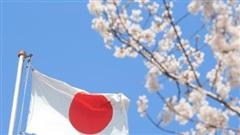 Nhật Bản hỗ trợ 10 tỷ USD cho các dự án khử carbon ở Đông Nam Á