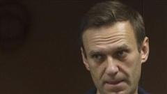 Vụ Navalny: Phe luật sư bào chữa tung toàn bộ phán quyết của Tòa án Nga phản pháo lời Tổng thống Putin
