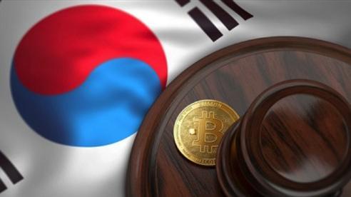 Hàn Quốc tịch thu 47 triệu USD tiền điện tử của hơn 12.000 người trốn thuế