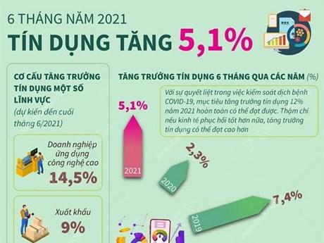 [Infographics] Tín dụng trong 6 tháng đầu năm 2021 tăng 5,1%