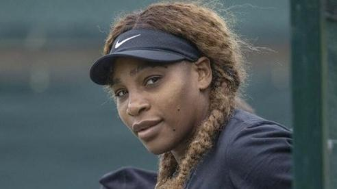 Serena Williams sẽ không tham dự Olympic Tokyo