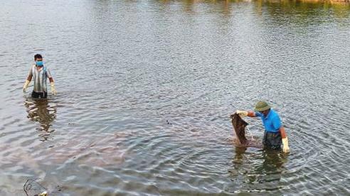 Hải Dương: Người dân Ninh Giang phát hiện thi thể nam giới tử vong trên sông Dầm
