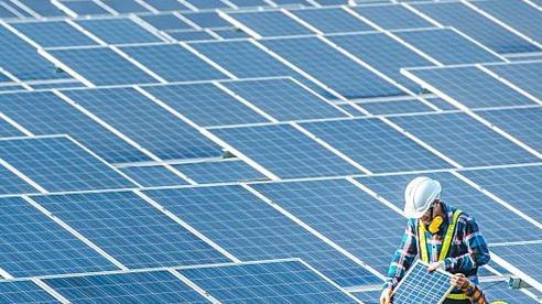 Tăng cường chính sách việc làm xanh để phát huy tối đa tiềm năng của ASEAN