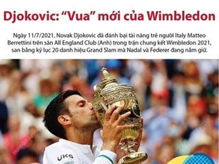 [Infographics] Novak Djokovic đăng quang Wimbledon 2021