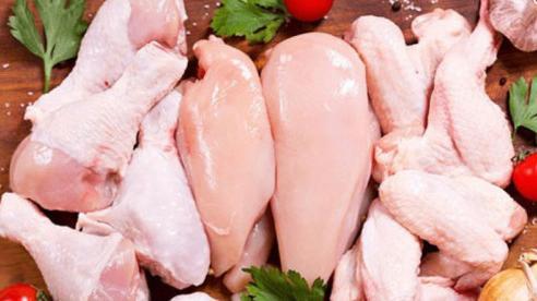 Ức gà và đùi gà: Phần nào của con gà tốt cho sức khỏe hơn?