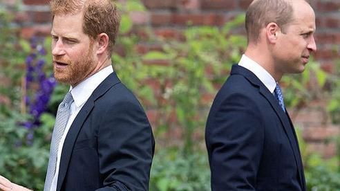 Không để em trai 'vượt mặt' kiếm tiền, Hoàng tử William đưa ra hành động bất ngờ khiến dân tình hả hê