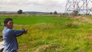 Đang cắt cỏ, leo lên tháo trụ điện đường dây 500kV bán