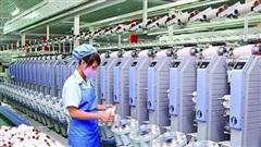 Dệt may thành công (TCM): Lãi quý 2 giảm 27%, dòng tiền kinh doanh âm