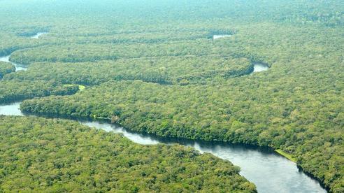Công viên Salonga không còn là 'Di sản thế giới bị đe dọa'