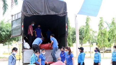 Kon Tum: Hỗ trợ 50 tấn rau, củ, quả cho TP Hồ Chí Minh