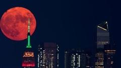 Khói do cháy rừng ở Mỹ khiến trăng rằm chuyển màu cam đỏ