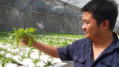 Phú Quốc phát động người dân tăng cường sản xuất cây ngắn ngày